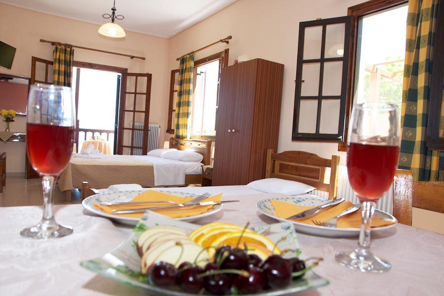 family apartment pelion agios ioannis kitchen beach